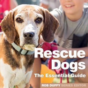 The Essential Guide To Rescue Dogs