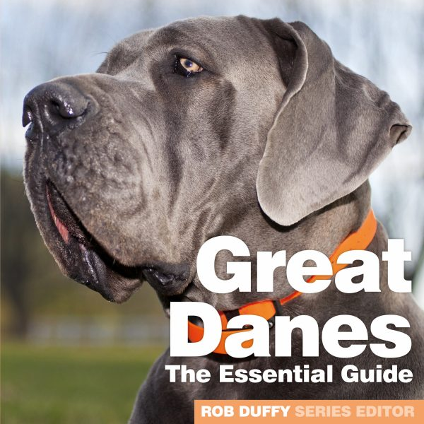 D11_Great Danes – The Essential Guide