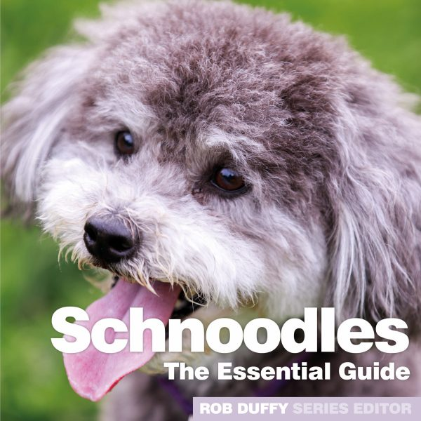 D13_Schnoodles – The Essential Guide