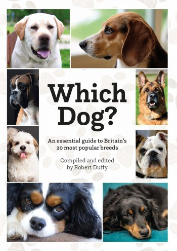 Which Dog? An Essential Guide To Britain's 20 Most Popular Breeds