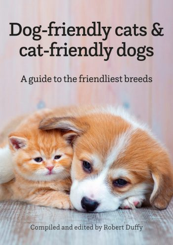 Dog-friendly Cats & Cat-friendly Dogs A Guide To The Friendliest Breeds