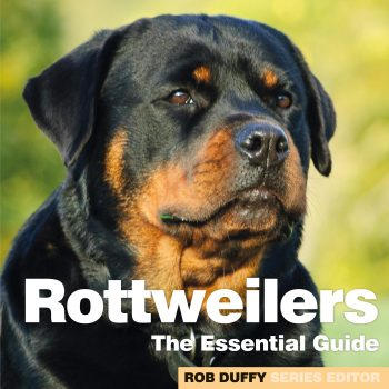 Rottweilers The Essential Guide